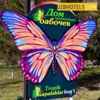 В зоопарке Ташкента к Наврузу откроется Дом тропических бабочек