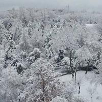 Где-то в Ташкенте